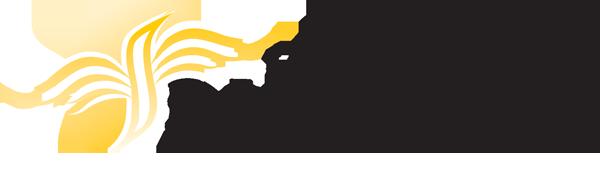 Fondazione Baccichetti Logo